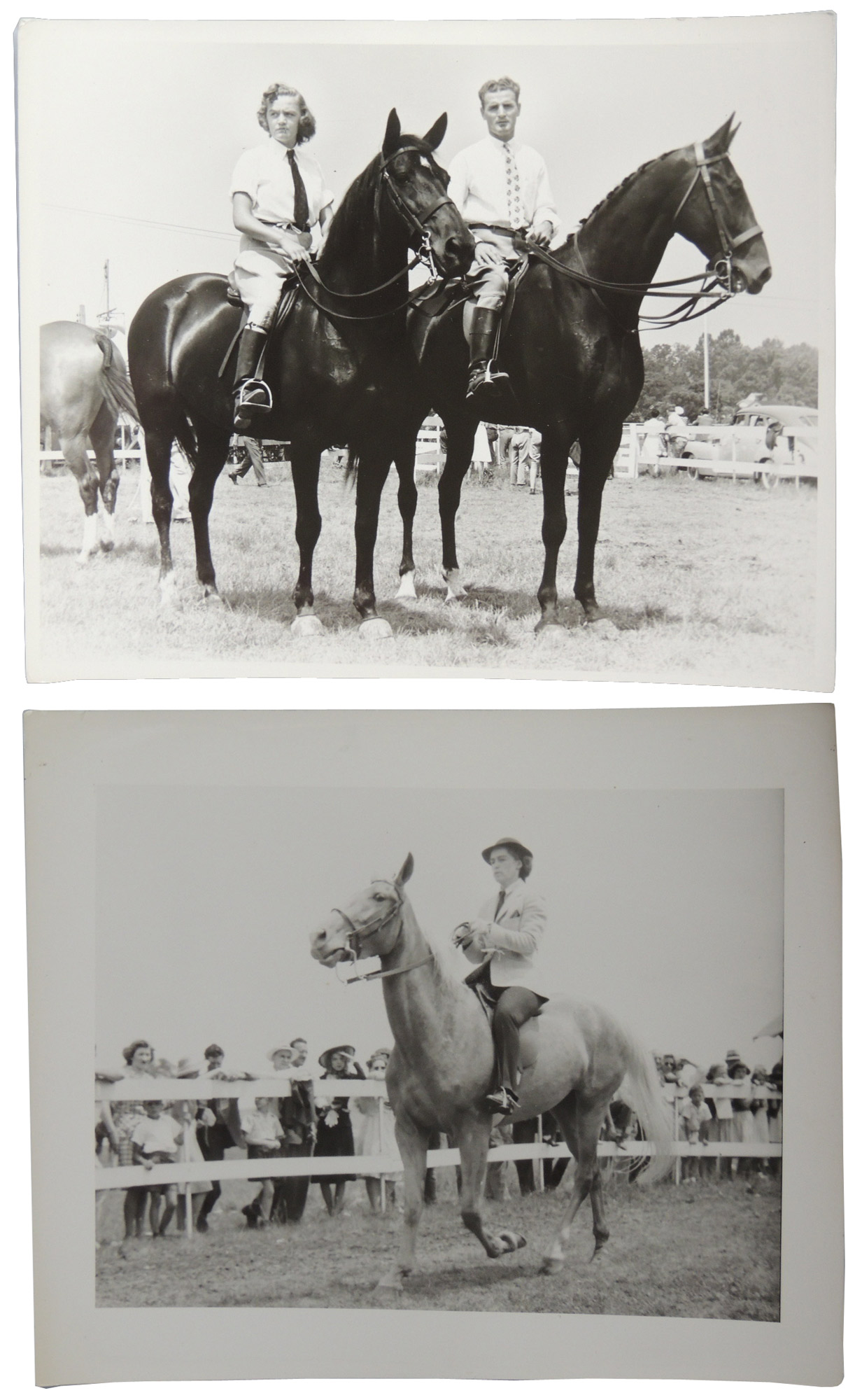 1940s Equestrian Photographic Collection